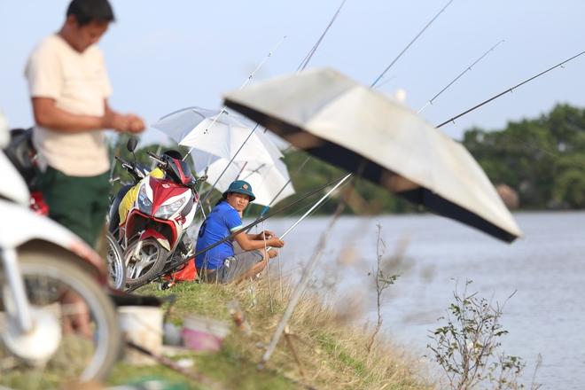 Ảnh: Hàng trăm cần thủ kiếm bộn cá trên dòng sông lũ ở Hà Nội - Ảnh 2.