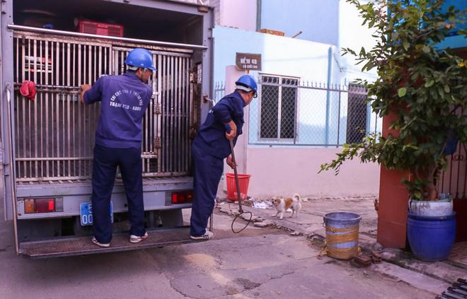 Dẫn chó cưng đi chợ không rọ mõm, người dân bất ngờ khi bị Đội săn bắt chó TP HCM hốt về - Ảnh 1.