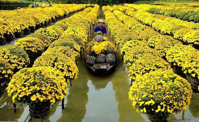 Lac buoc canh tien o nhung lang hoa noi tieng mien Nam