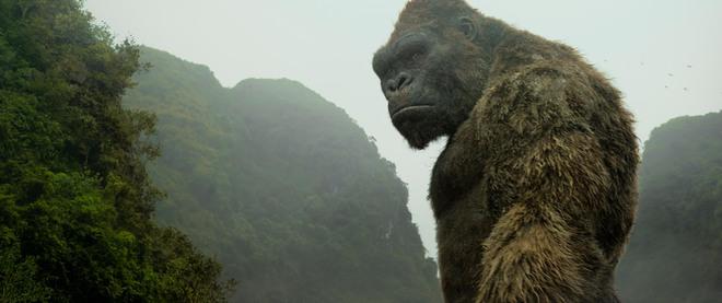 Kong: Skull island và một sự thật đau điếng người - Ảnh 1.