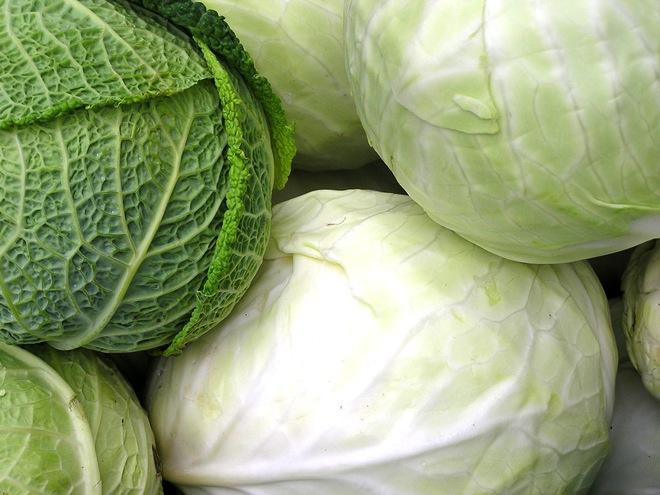 5 loại thực phẩm tốt nhất cho gan: Người muốn dưỡng gan chữa bệnh nên ăn thường xuyên - Ảnh 1.