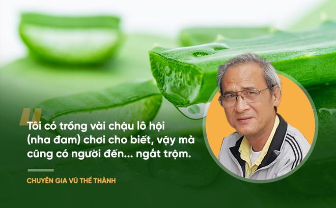 """Bài thuốc nổi tiếng thế giới """"chữa nhiều bệnh ung thư"""": Chuyên gia Việt Nam nói gì?"""