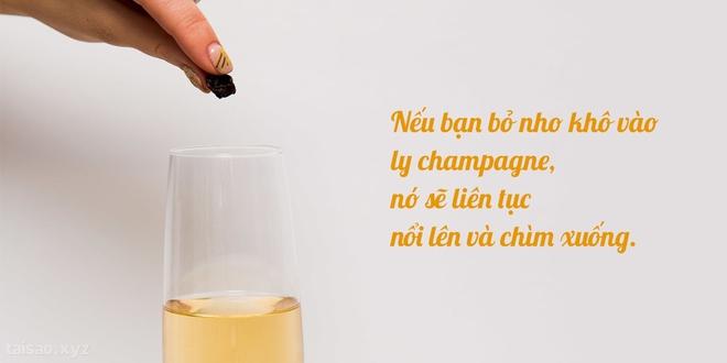 Điều bất ngờ thú vị gì xảy ra khi bỏ nho khô vào rượu champagne? - Ảnh 3.