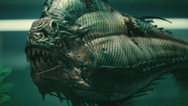 Cá piranha hiếu chiến, hung hăng thật, nhưng gặp đối thủ này là tắt điện - Ảnh 5.