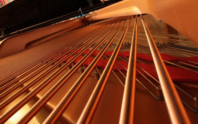 Những điều thú vị về đàn Piano - bạn biết hết chưa? - Ảnh 1.