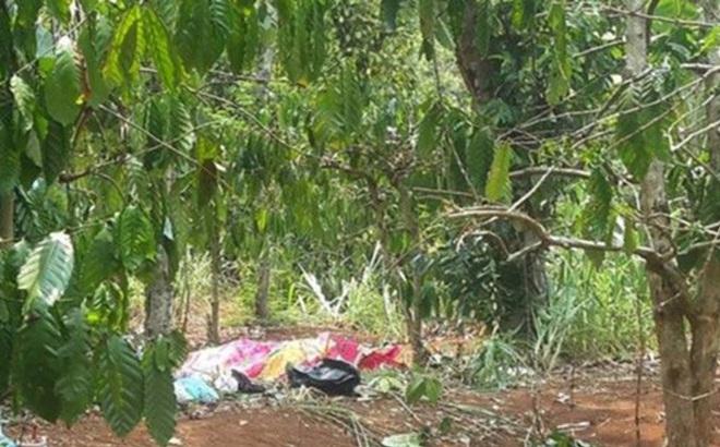 Vụ Phó chủ tịch HĐND xã bị bắn chết: Nạn nhân có quan hệ tình cảm với vợ cũ của hung thủ