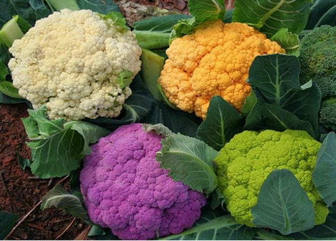 Giáo sư dinh dưỡng chia sẻ cách biến 10 thực phẩm thông thường thành vị thuốc quý - ảnh 2