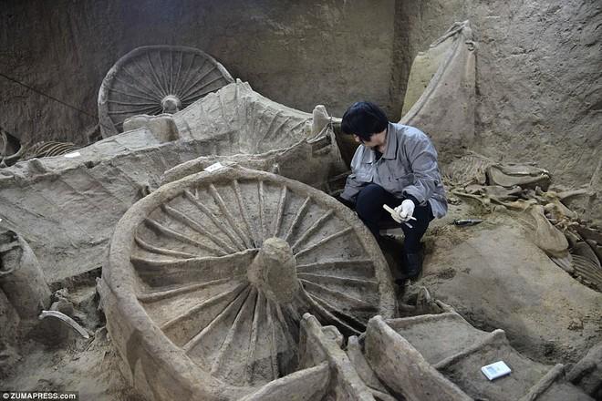 Bí ẩn cổ mộ 2.400 năm chứa hơn 100 xác ngựa ở Trung Quốc - Ảnh 4.
