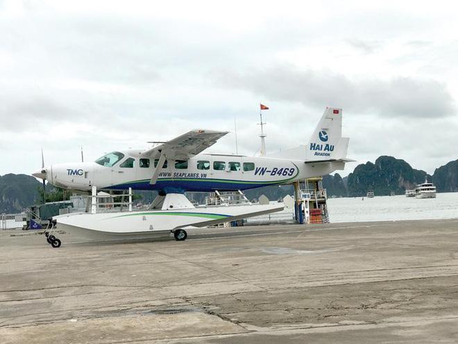AirAsia gặp khó với Hải Âu - Ảnh 1.