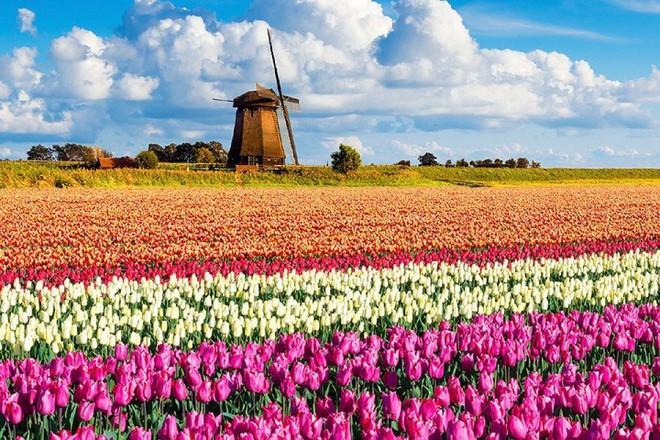 Mù Cang Chải lọt top 10 địa danh đẹp nhất thế giới trên tạp chí du lịch Anh - Ảnh 1.