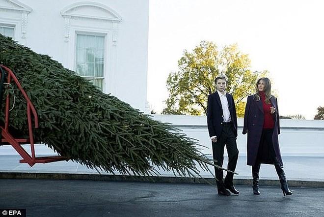 Giáng sinh đầu tiên của ông Trump tại Nhà Trắng có gì? - Ảnh 1.