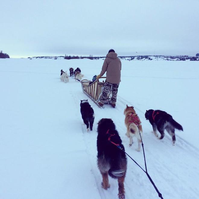 Gió mùa đông bắc của mình đã là gì, ở Canada bát mì tôm còn đóng băng cơ - Ảnh 1.