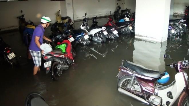 Nước nhấn chìm cả trăm xe máy, ô tô trong chung cư - Ảnh 3.