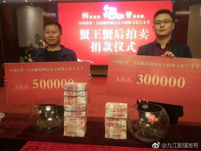 Sốc: Cặp cua 'vua và hoàng hậu' được bán đấu giá gần 3 tỷ đồng - Ảnh 3.