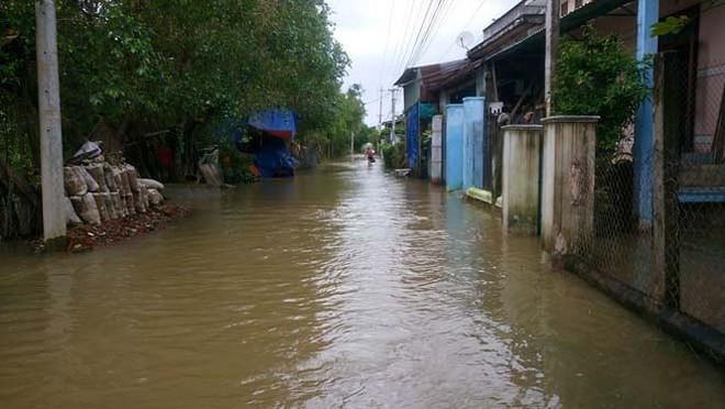 Đường phố Bình Định chìm trong biển nước, người dân dùng máy cày vượt lũ - Ảnh 3.