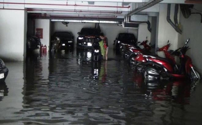 Nước nhấn chìm cả trăm xe máy, ô tô trong chung cư