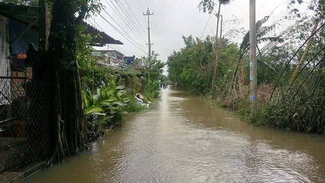 Đường phố Bình Định chìm trong biển nước, người dân dùng máy cày vượt lũ - Ảnh 4.