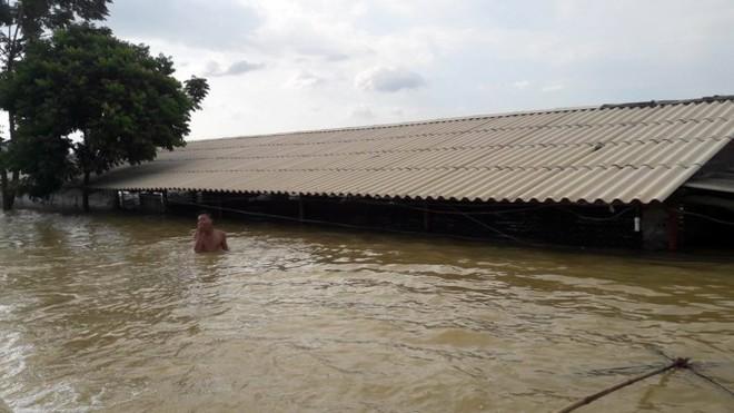 Hình ảnh nước ngập trắng vùng sau sự cố vỡ đê ở Hà Nội - Ảnh 5.