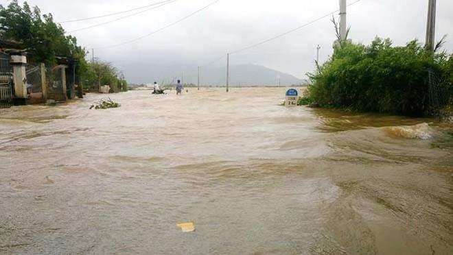 Đường phố Bình Định chìm trong biển nước, người dân dùng máy cày vượt lũ - Ảnh 5.