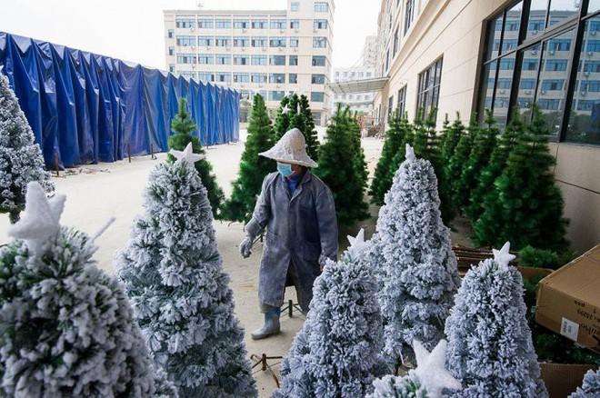 Đột nhập ngôi làng cung cấp Giáng sinh cho cả thế giới - Ảnh 5.