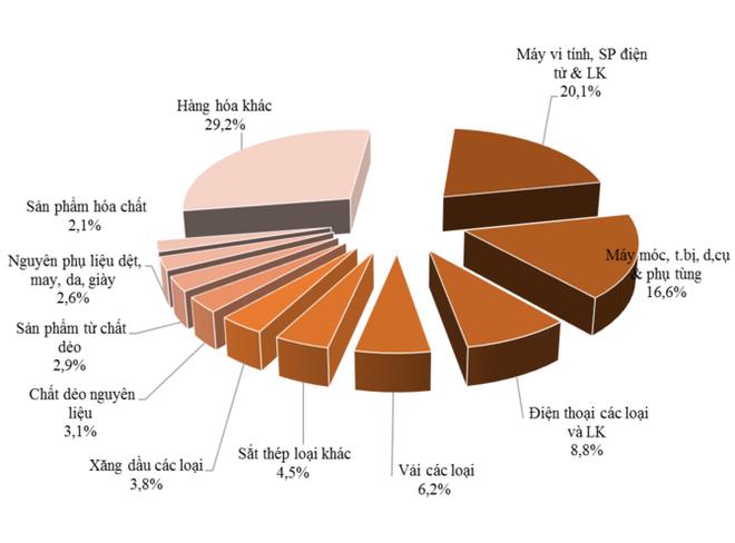 Nước nào là đối tác thương mại lớn nhất của Việt Nam trong APEC? - Ảnh 6.