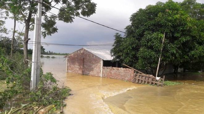Hình ảnh nước ngập trắng vùng sau sự cố vỡ đê ở Hà Nội - Ảnh 7.