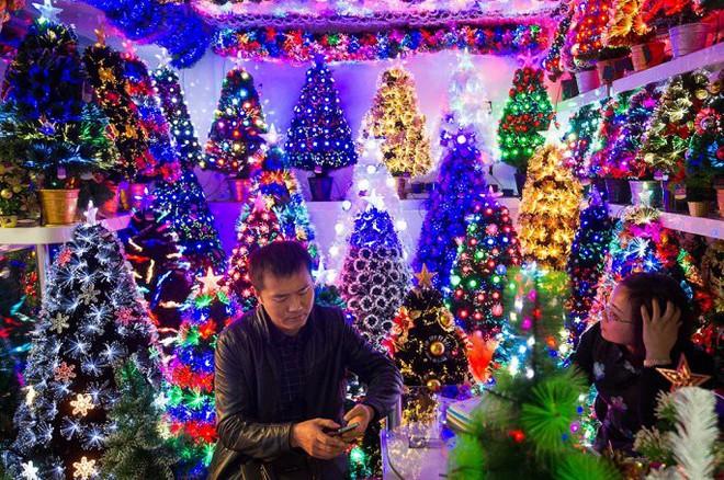 Đột nhập ngôi làng cung cấp Giáng sinh cho cả thế giới - Ảnh 7.