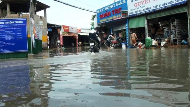 Nước nhấn chìm cả trăm xe máy, ô tô trong chung cư - Ảnh 8.