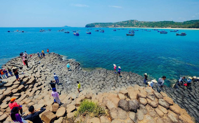 Thăm Ghềnh Đá Đĩa, thưởng thức hải sản đầm Ô Loan - 2 trải nghiệm nhất định phải làm khi ghé Phú Yên