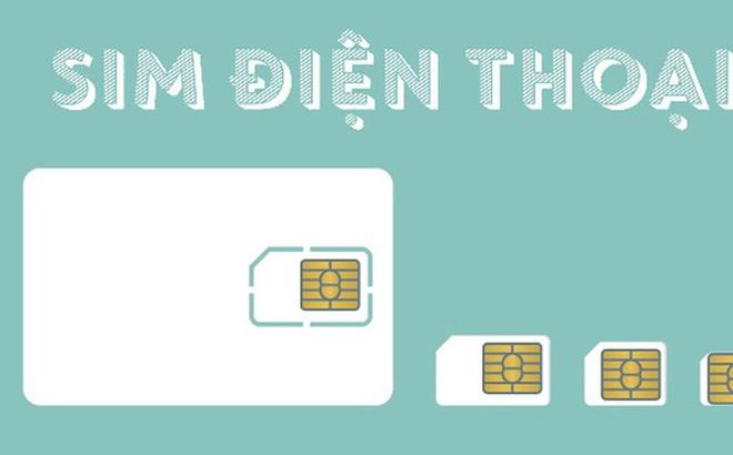 [Infographic]SIM điện thoại, con chip nhỏ hơn đầu ngón tay trị giá cả triệu USD