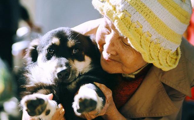 Hồng nhan thời trẻ nhưng về già chẳng chồng con, cụ bà 83 tuổi bầu bạn với thú hoang nơi phố núi Đà Lạt