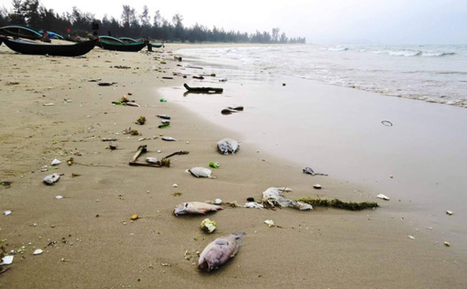 Kiểm tra tình hình chi trả bồi thường cho ngư dân sau sự cố môi trường biển