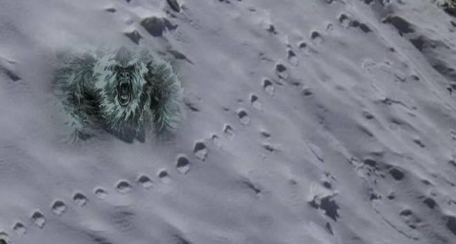 Truy lùng dấu vết 3 quái vật khổng lồ trên Trái Đất: Giới khoa học không thể làm ngơ - Ảnh 9.