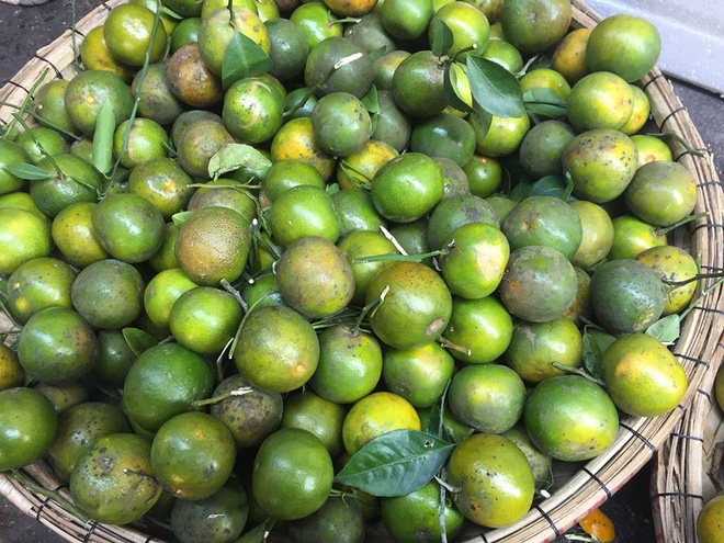 Nhìn giống chanh nhưng ngọt như đường, loại quả giá rẻ này gây 'sốt' thị trường Đà Nẵng - Ảnh 1.