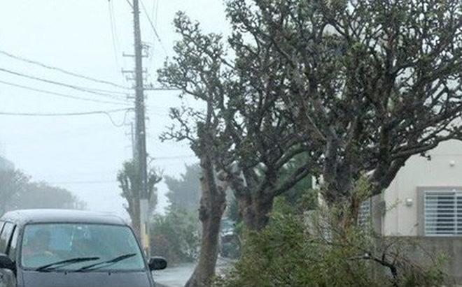 Nhật Bản tê liệt vì bão Trami, chuẩn bị đối mặt bão mới