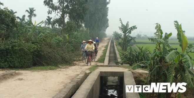Ngôi làng ở Hưng Yên: Cứ đào xuống đất là trúng mộ thân cây vài ngàn năm tuổi - Ảnh 1.