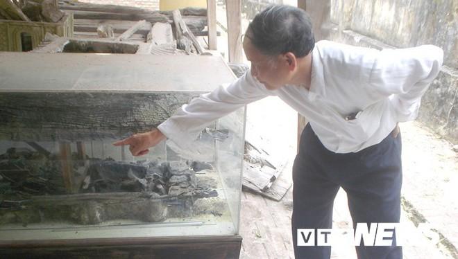 Ngôi làng ở Hưng Yên: Cứ đào xuống đất là trúng mộ thân cây vài ngàn năm tuổi - Ảnh 2.