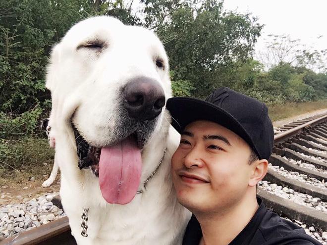 """Chó bố nặng gần 90 kg và đàn chó con hiếm gây sốt"""" mạng xã hội Việt - Ảnh 6."""