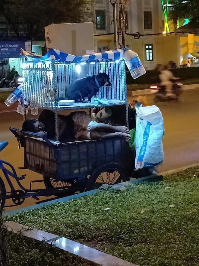 Chiếc xe ve chai trên đường phố Sài Gòn khiến ai đi qua cũng muốn nán lại ngắm nhìn - Ảnh 1.