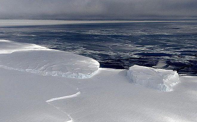 """""""Tiếng hát"""" đến từ Nam Cực sẽ là âm thanh ám ảnh bạn nhất trong ngày ..."""