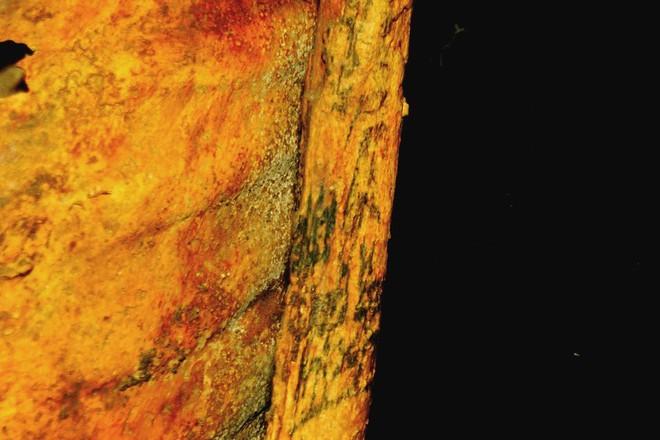 Bật mí thêm về xác ướp của phụ nữ Ai Cập với hình xăm 3.000 năm tuổi chưa phai - Ảnh 3.