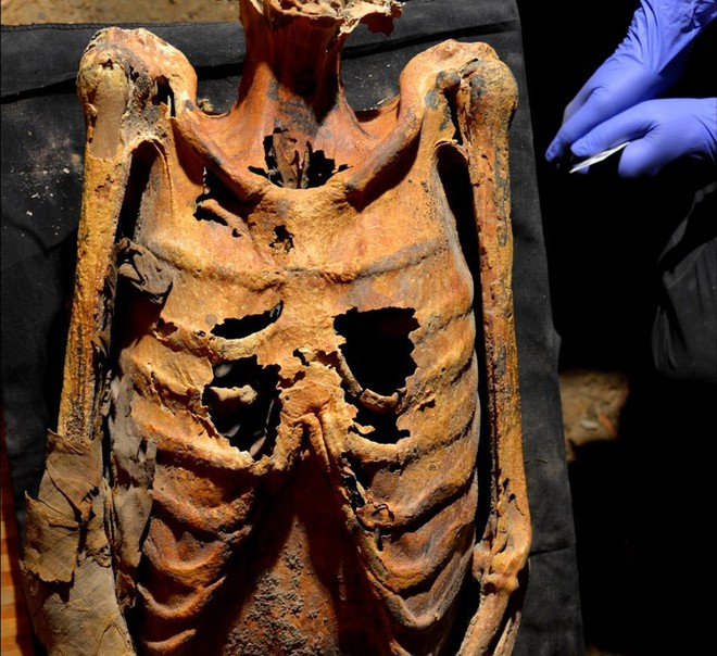 Bật mí thêm về xác ướp của phụ nữ Ai Cập với hình xăm 3.000 năm tuổi chưa phai - Ảnh 2.