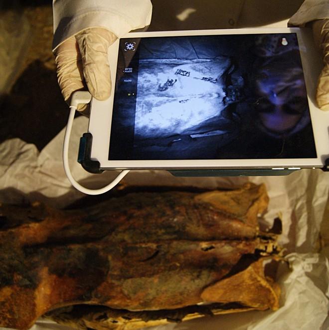 Bật mí thêm về xác ướp của phụ nữ Ai Cập với hình xăm 3.000 năm tuổi chưa phai - Ảnh 5.