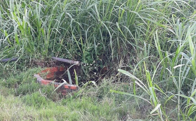 Vụ người phụ nữ bị giết, vứt xác xuống giếng: Em ruột báo công an anh trai giết người