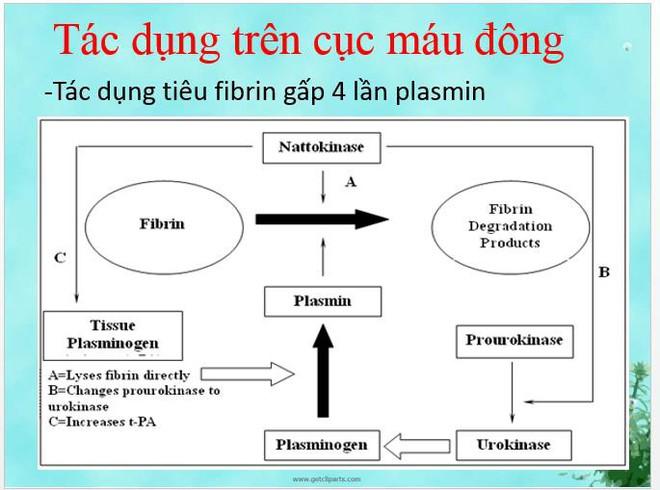 Phục hồi chức năng sau tai biến mạch máu não: Gian truân và cần sự kiên nhẫn từ cả người mắc lẫn gia đình - Ảnh 3.
