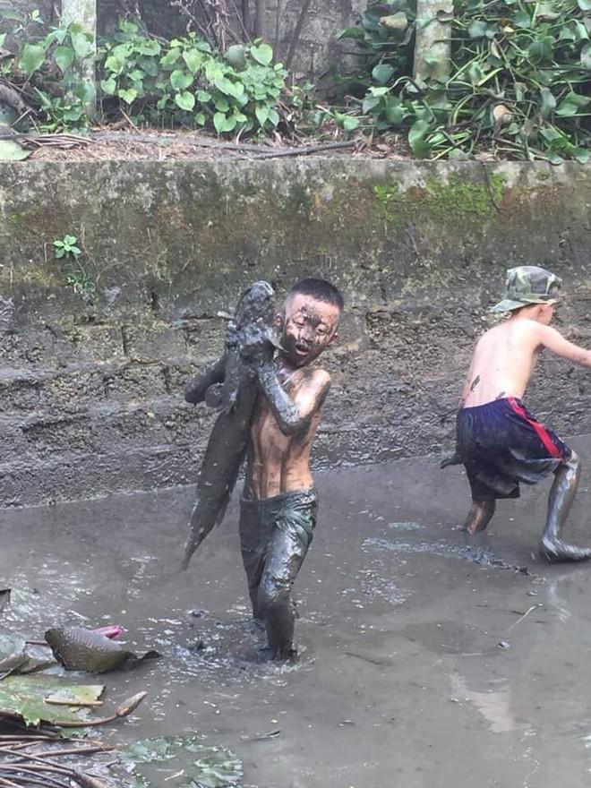 Cậu bé vây bắt con cá to gần bằng người khiến dân mạng vừa ngạc nhiên vừa thích thú - Ảnh 2.