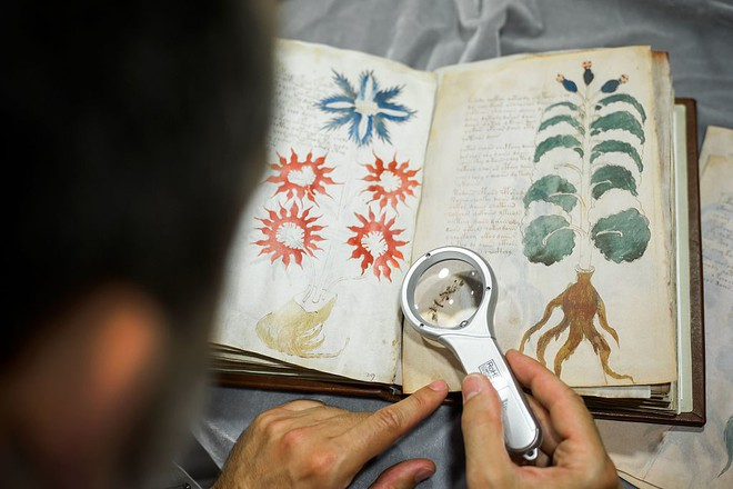 Bản thảo Voynich. (Ảnh qua ελculture)
