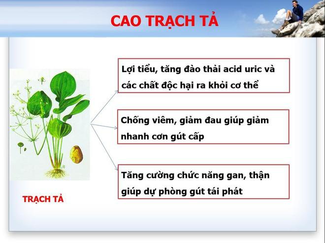 Tình trạng trẻ hóa bệnh gout và xu hướng hỗ trợ từ các thảo dược thiên nhiên ở Việt Nam - Ảnh 4.