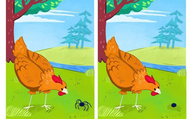 Có 8 điểm khác biệt của 2 bức tranh này: Đố bạn nhìn ra được trong 3 giây!