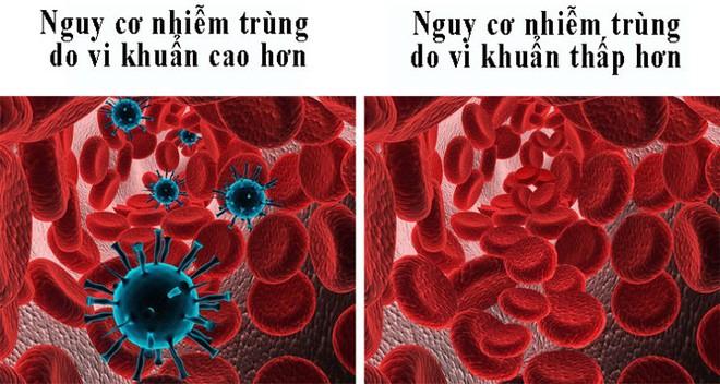 8 điều người nhóm máu O nên biết - Ảnh 5.
